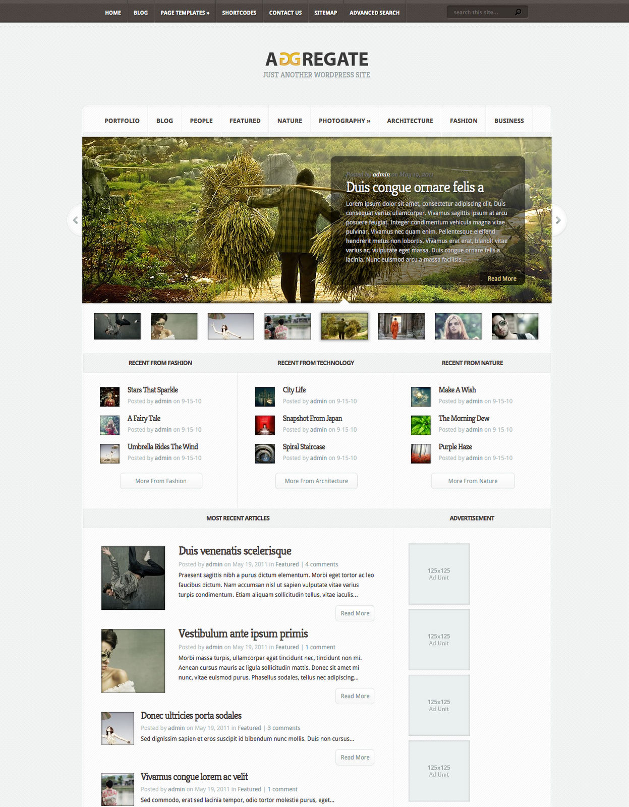 Aggregate Wordpress Theme Free Download by ElegantThemes.