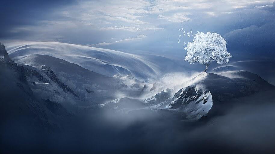 Winter, Snow, Tree, Mountain, Scenery, Landscape, 4K, #4.2042