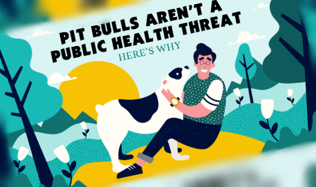 Pit Bulls Aren't a Public Health Threat - Here's Why