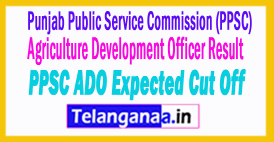 Punjab Agriculture Development Officer Result 2018 PPSC ADO Expected Cut Off