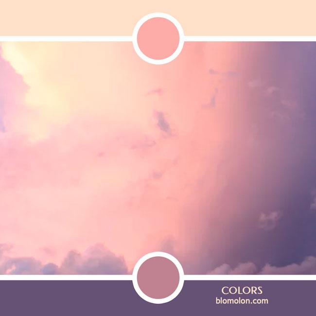variedad_en_color_color_72