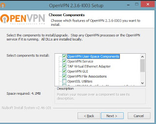 openvpn_client