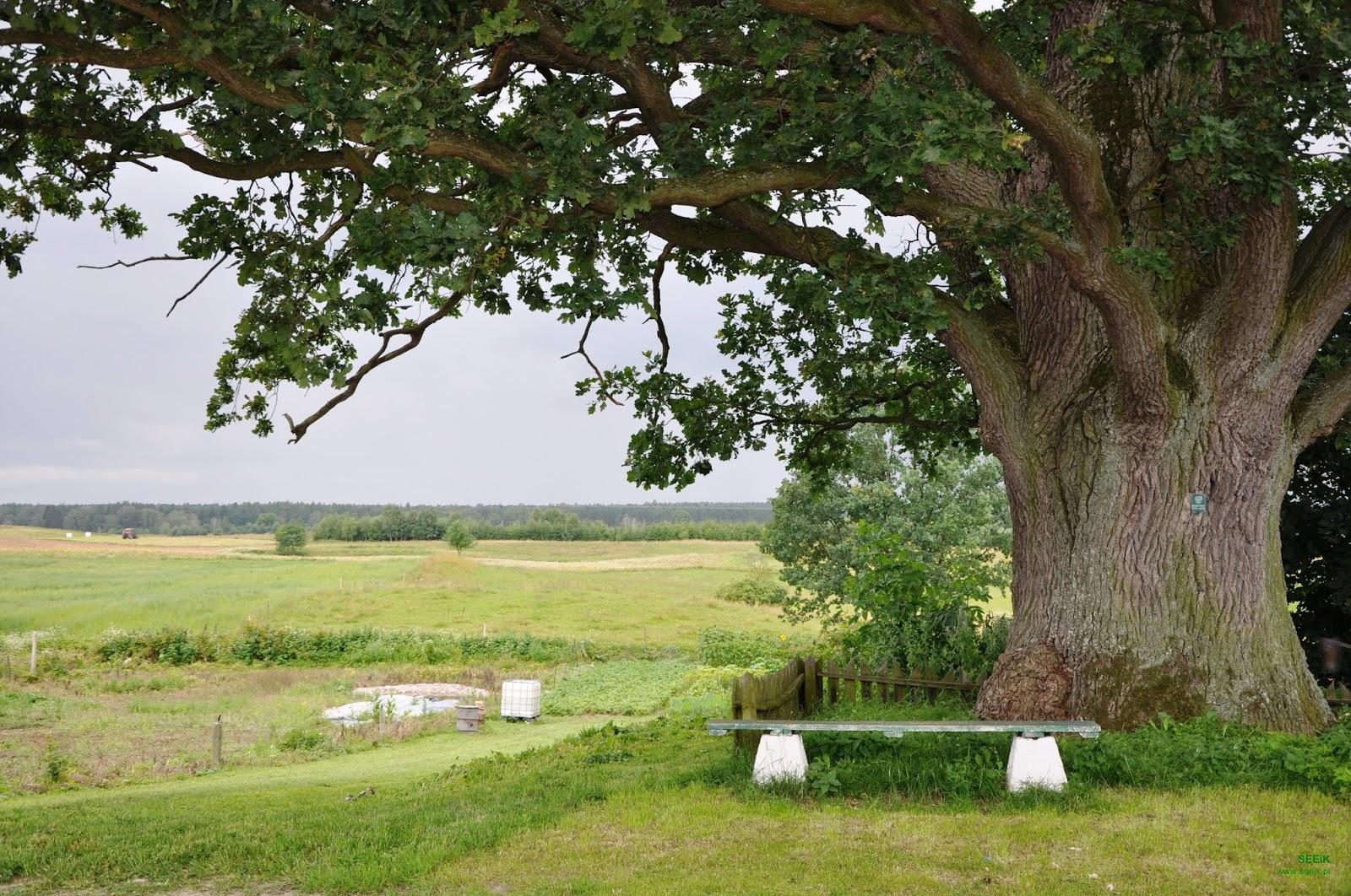 www.seeik.pl SEEiK Association nature monuments