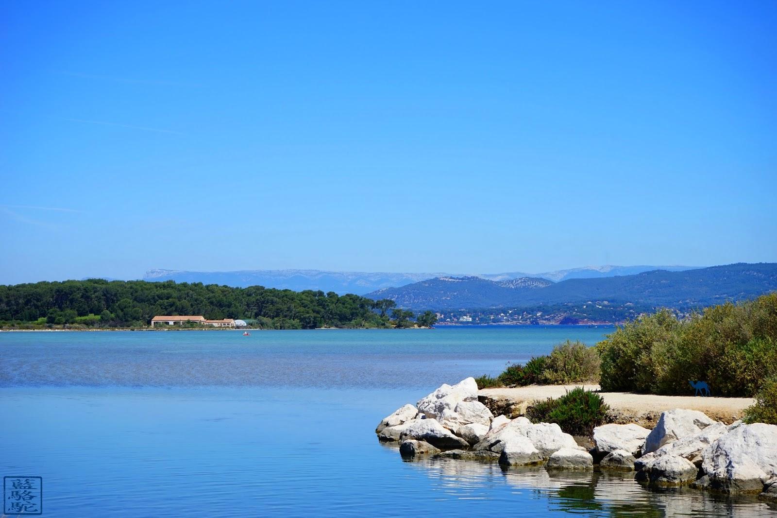 Le Chameau Bleu - La pointe du Gaou
