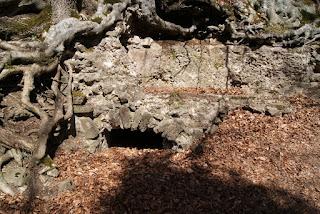 Ein kleiner Bogen unter dem Römerkanal. Er sorgt dafür, dass das Regenwasser ablaufen kann.