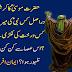 Hazrat Musa (A) Ka Karishmati Aasa Kes Nabi Ki Meras Tha?