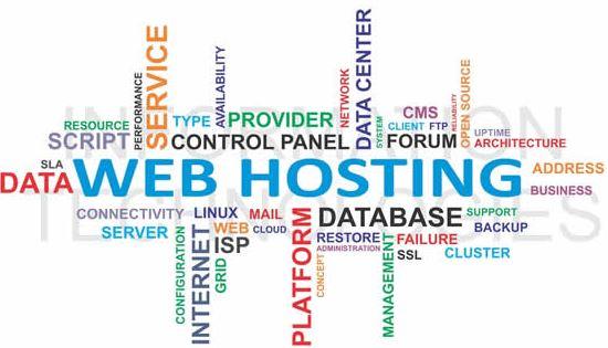 Web hosting nơi không gian lưu trên máy chủ có dịch vụ internet