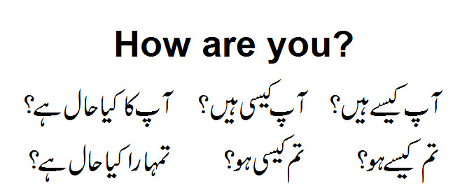 Are you meaning in urdu
