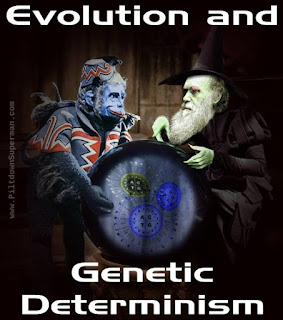 A dangerous amoral philosophy of Darwinism is genetic determinism. This tells us that even our morality is genetic and biblical creation tells us the truth.