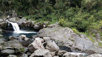 cascade-langevin.jpg