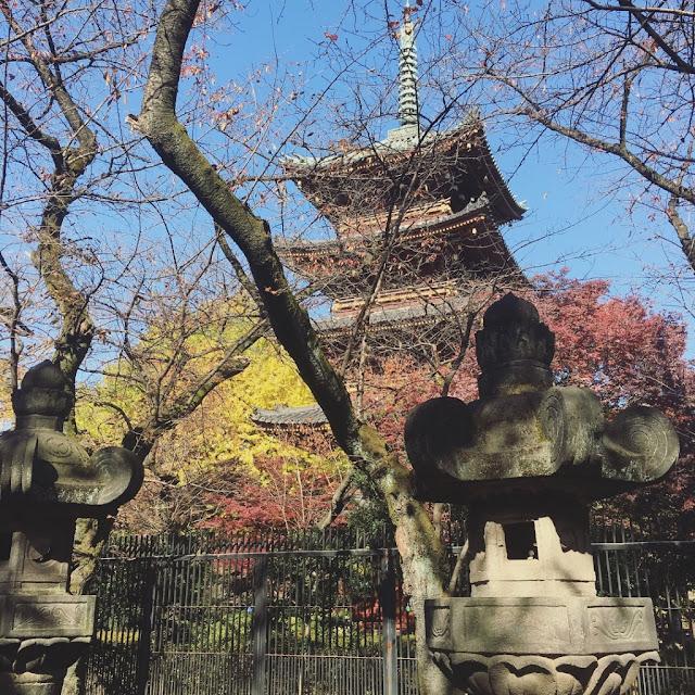 ueno park trees japan