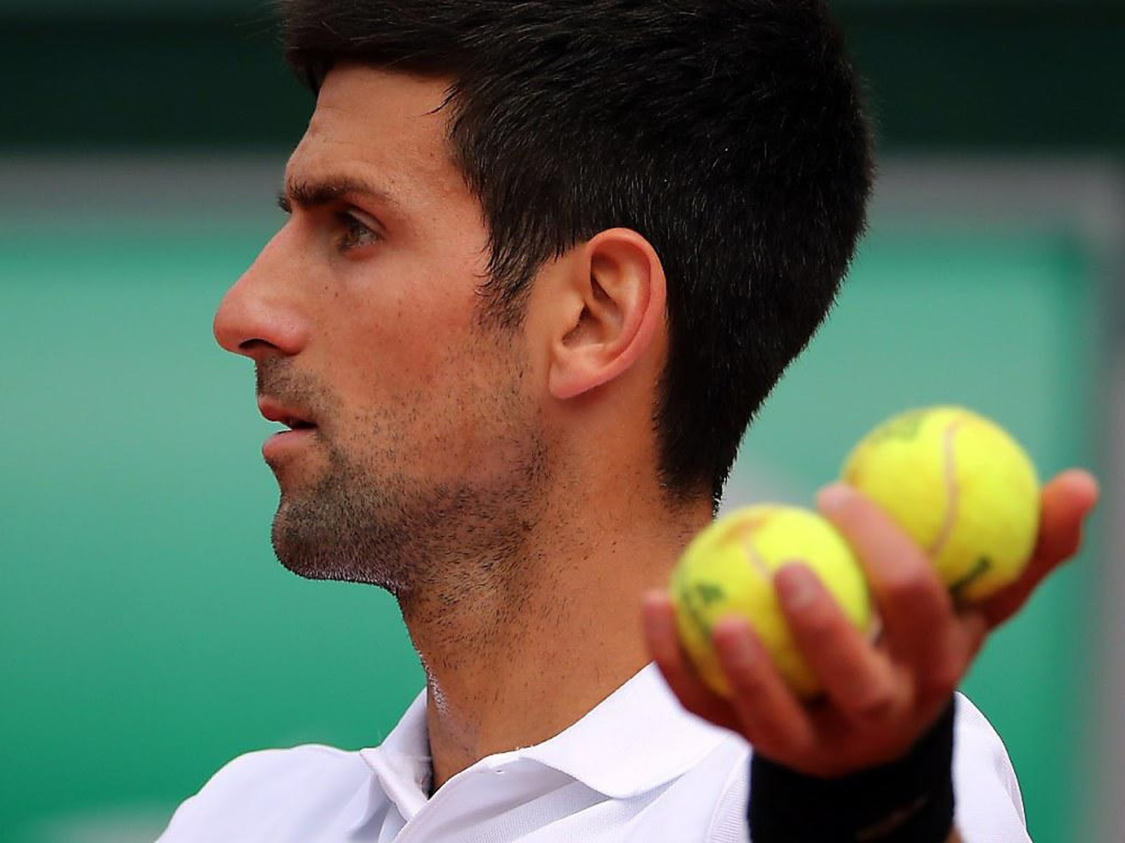 NOVAK DJOKOVIC 8