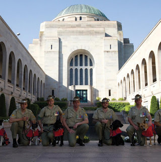 Australian-army-dogs-and-handlers