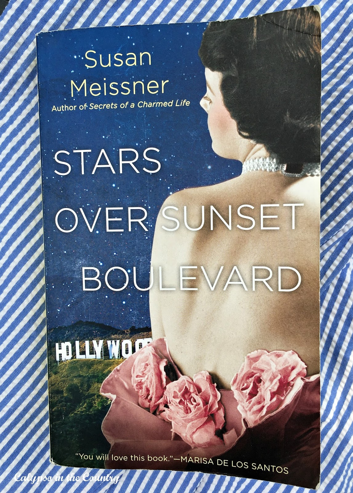 Stars Over Sunset Boulevard by Susan Meissner - a great book for the beach!