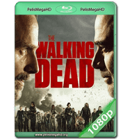 THE WALKING DEAD S08E07 WEB-DL 1080P HD MKV ESPAÑOL LATINO