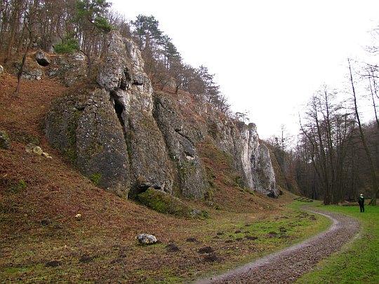 Dolina Mnikowska, skały po północno-wschodniej stronie doliny.