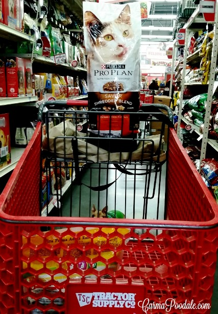 Tractor Supply cart with Purina Pro Plan Cat food.