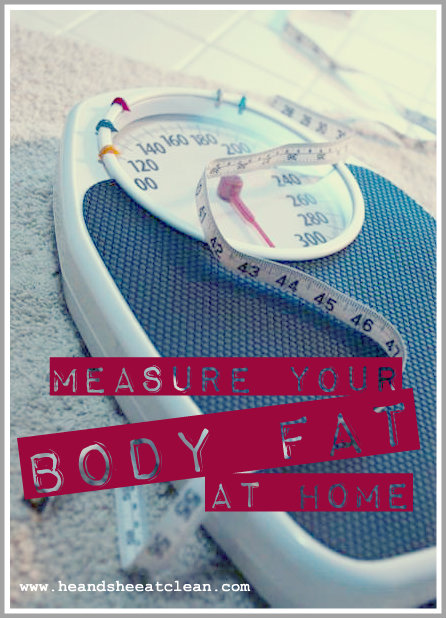 Measure Body Fat At Home 67