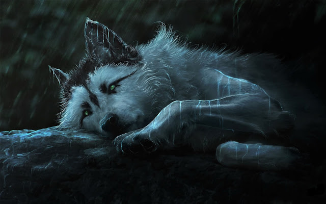 خلفيات الذئب
