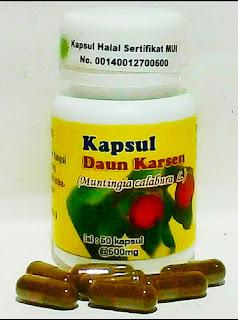 Jual Kapsul Daun Karsen/Cherry Obat Herbal di Surabaya.