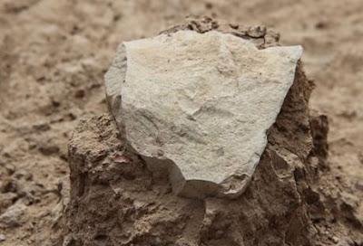 I manufatti di Lomekwi anticipano di 700.000 anni quelli ritrovati a Oldowan