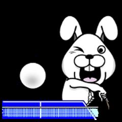 The Fun!! Rabit table tennis club