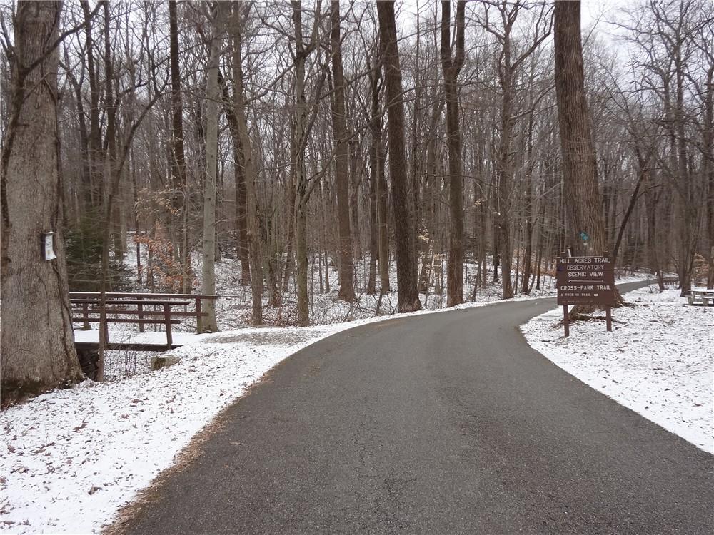 Gone Hikin': Ken Lockwood Gorge and Voorhees State Park, NJ