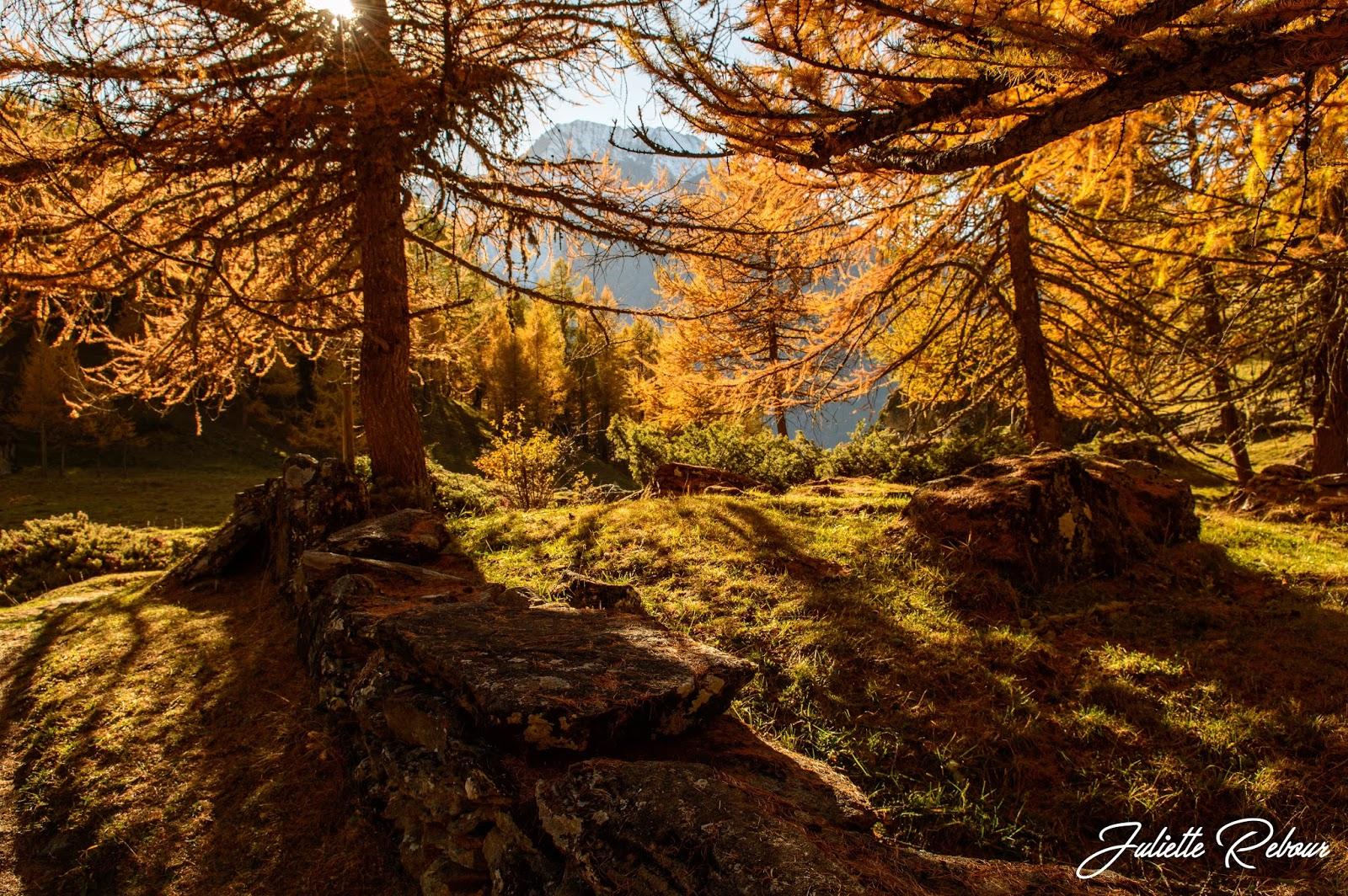 Alpage du Monal en automne