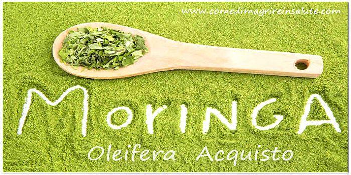 Moringa Oleifera Acquisto