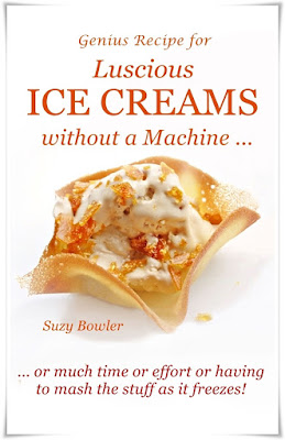 Luscious Ice Cream without a Machine suzy bowler