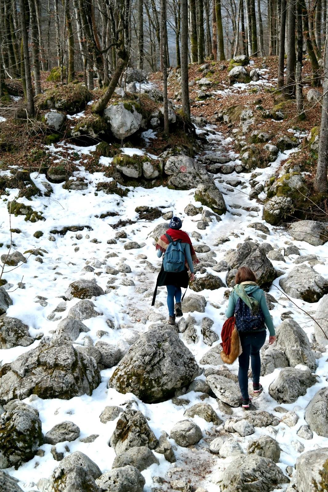 Meer van Bohinj wandelen