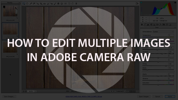 How to Edit Multiple Images in Adobe Camera Raw
