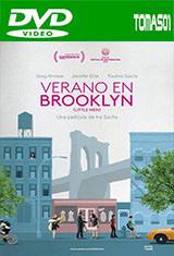 Verano en Brooklyn (2016) DVDRip
