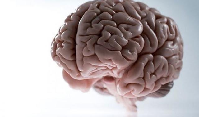 Gejala Penyakit Kanker Otak dan Pengobatannya