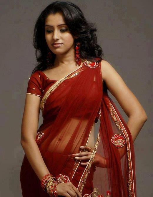 Amazing Indian Aunties Picture With Transparent Silk Saree -8038