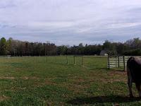 Powell Acres Farm