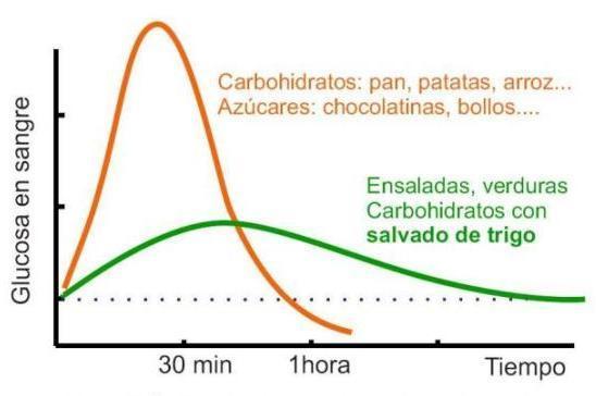 dieta bajo indice glucemico sop