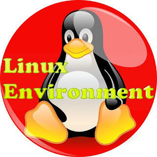 IPU BCA Semester 6: Linux Environment - Linux Boot Sequence