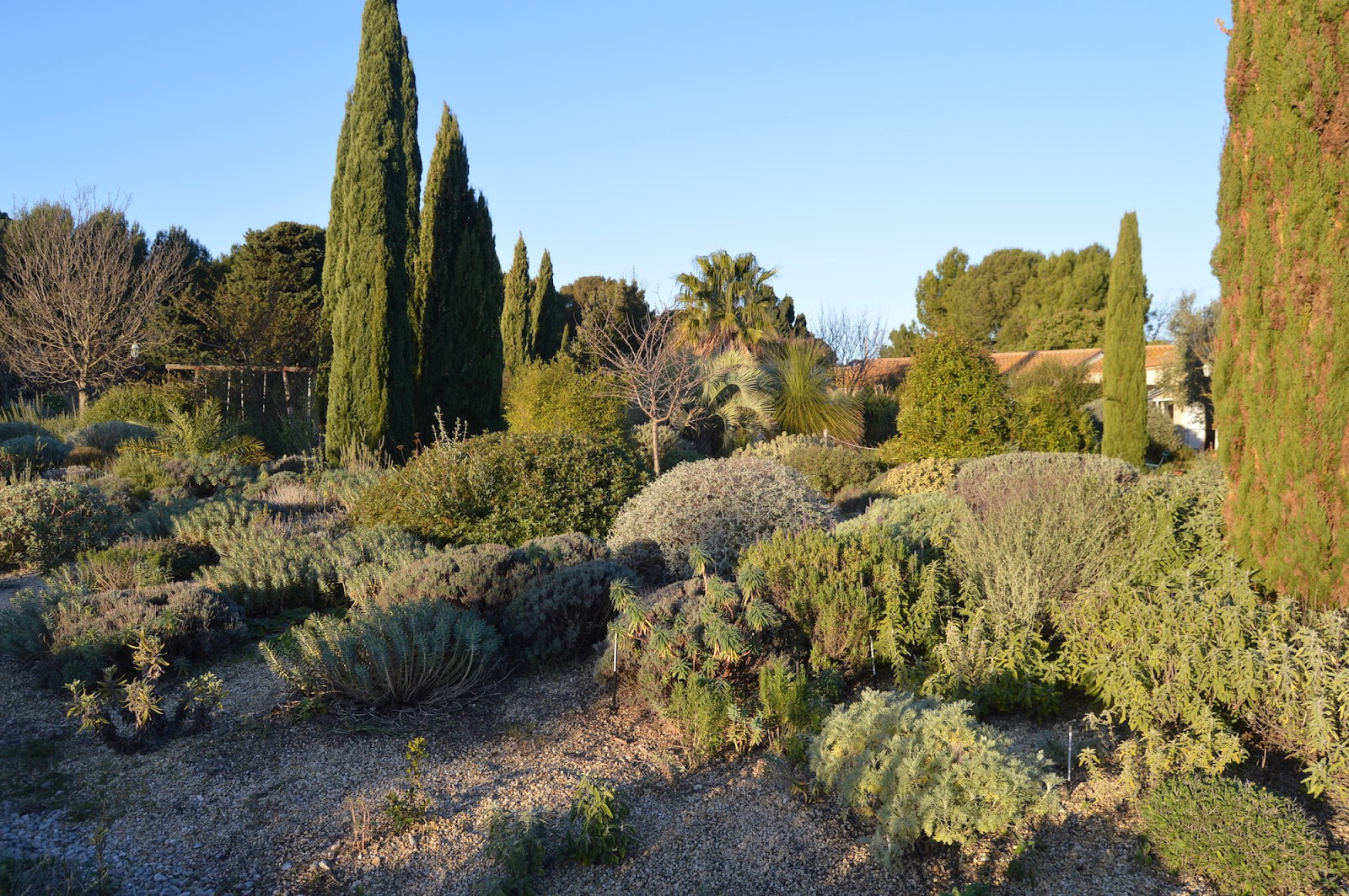 Noel S Garden Blog Olivier Filippi And The Mediterranean Garden