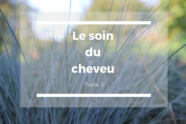 http://feminarrer.blogspot.com/2016/08/le-soin-du-cheveu-partie-2.html