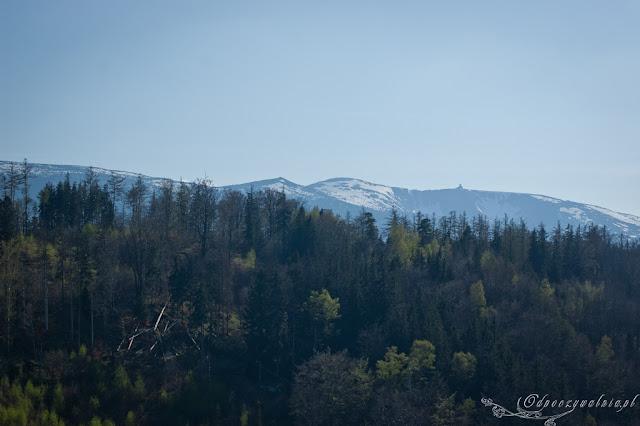 majówka w górach, sudety z dzieckiem, trekking rodzinny