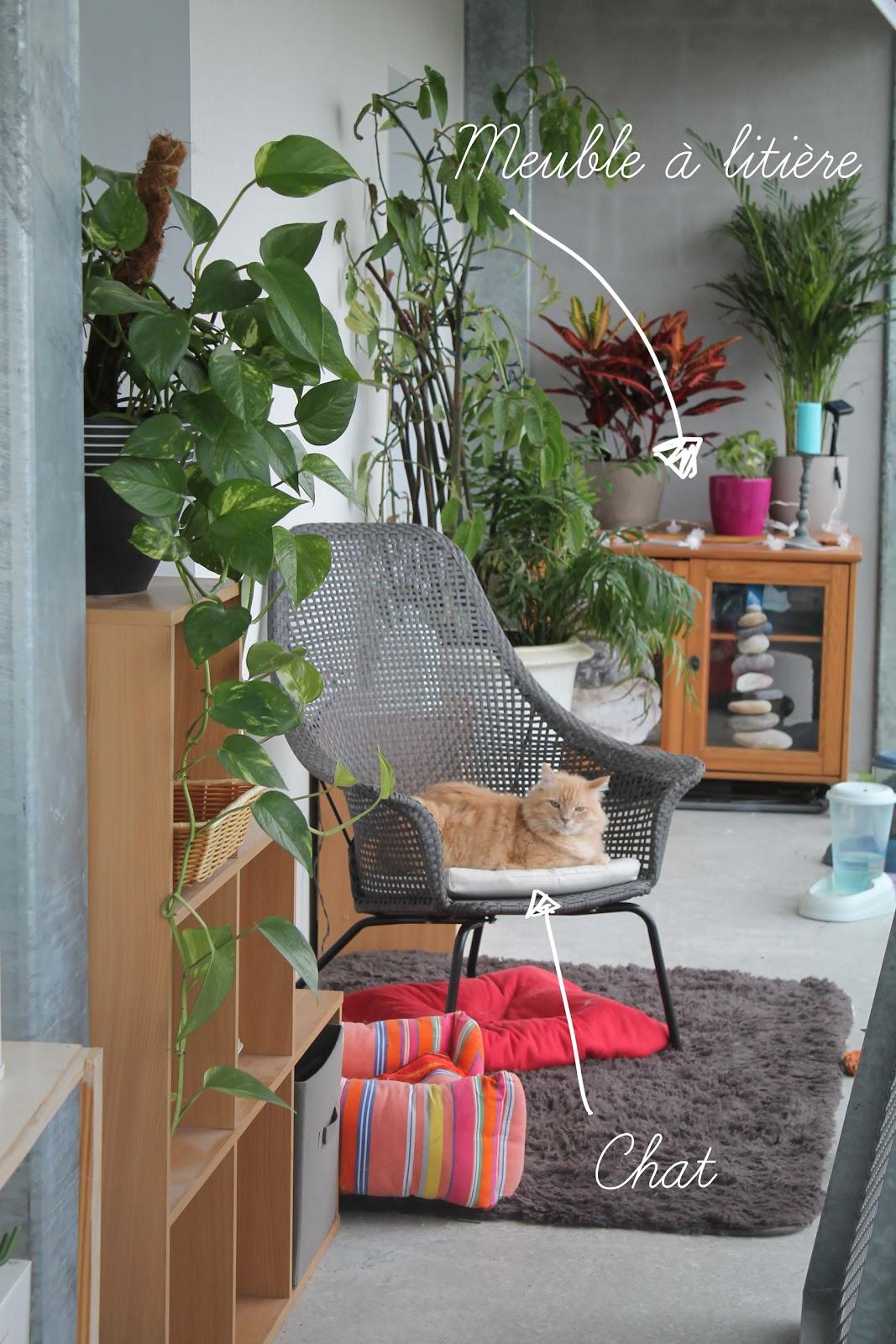 comment j 39 ai int gr la liti re de mes chats dans ma d co. Black Bedroom Furniture Sets. Home Design Ideas