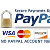send balance paypal hasil scam