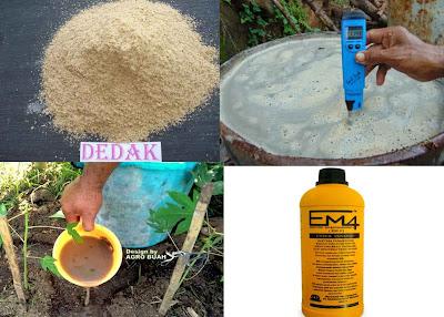 Cara Membuat Pupuk Kocor Secara Alami ( Organik )