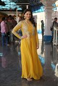 mehreen kaur latest glam pics-thumbnail-18