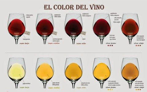 el-color-del-vino