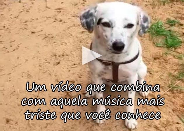 http://www.calangodocerrado.net/2017/08/pensa-na-musica-mais-triste-que-conhece-e-veja-o-post.html