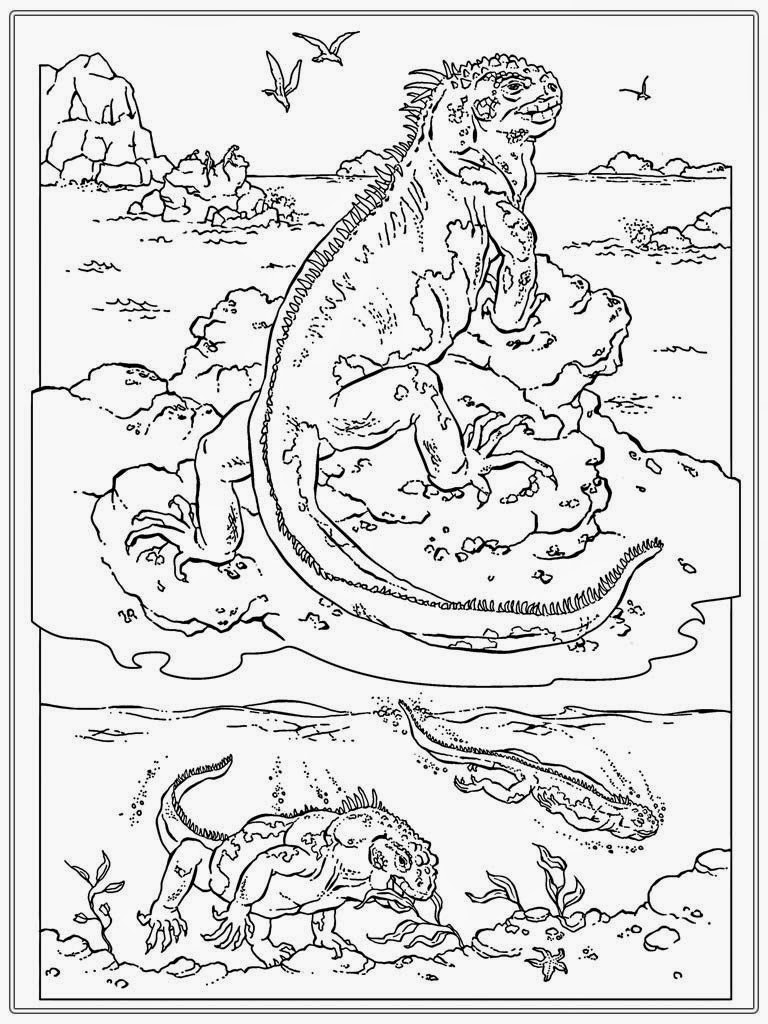 realistic coloring book pages - photo#30
