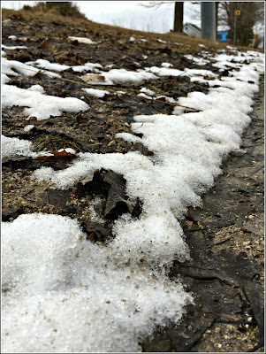 April 2, 2019 Out for an afternoon walk and there is still snow.