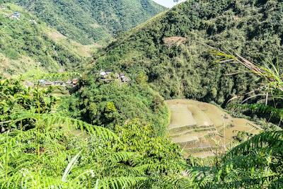 Trek-Pula-Ifugao-Banaue-Philippines